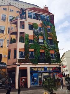 Lyon mural 3 042814
