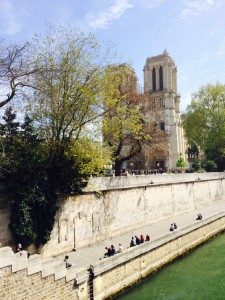 Paris river and notre dame 042814